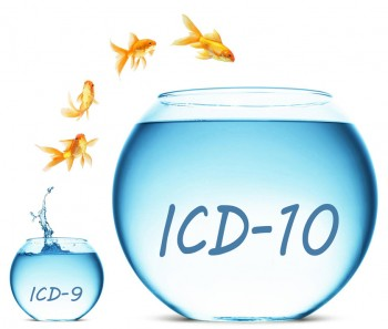 Transitioning to the ICD-10-CM