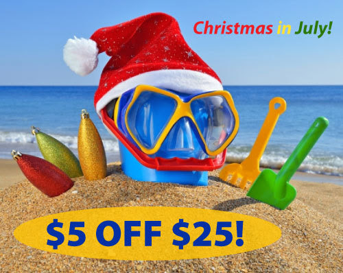 Christmas in July CE Sale
